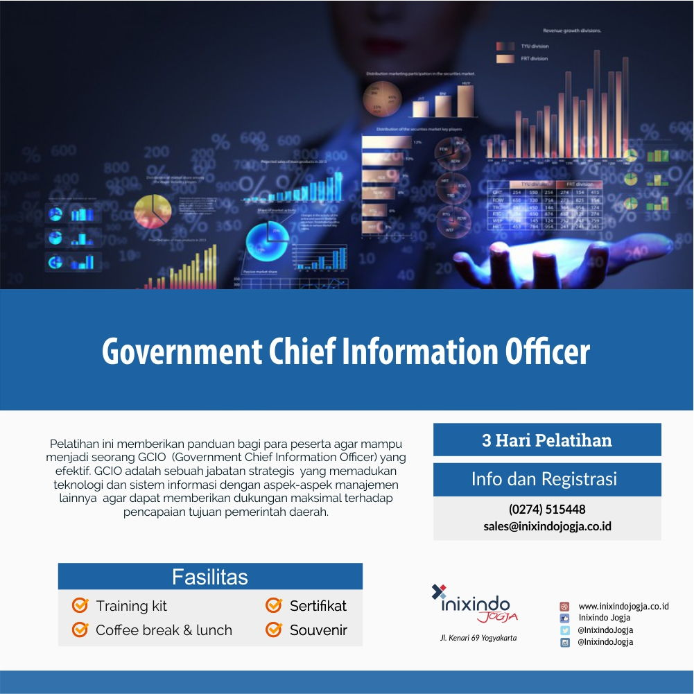 Government Chief Information Officer