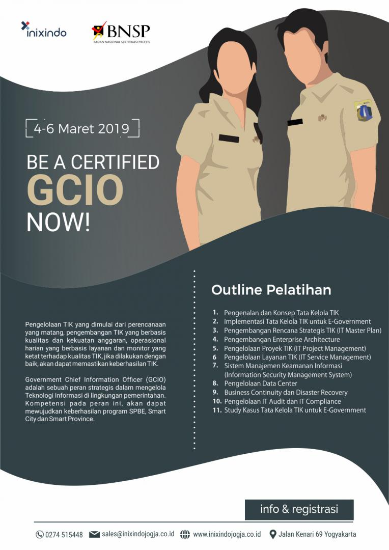 Government Chief Information Officer 6