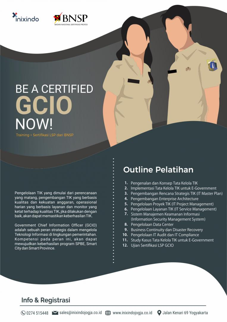Government Chief Information Officer 7