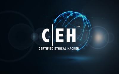 Pentingnya Certified Ethical Hacker (CEH), Bisa Menjaga Kedaulatan Negara